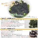 aosashijimi-soup-3p